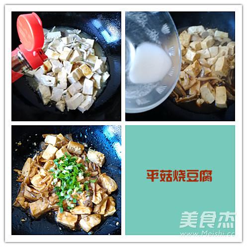 平菇烧豆腐的家常做法