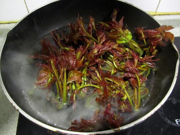 香椿拌腐竹的做法大全