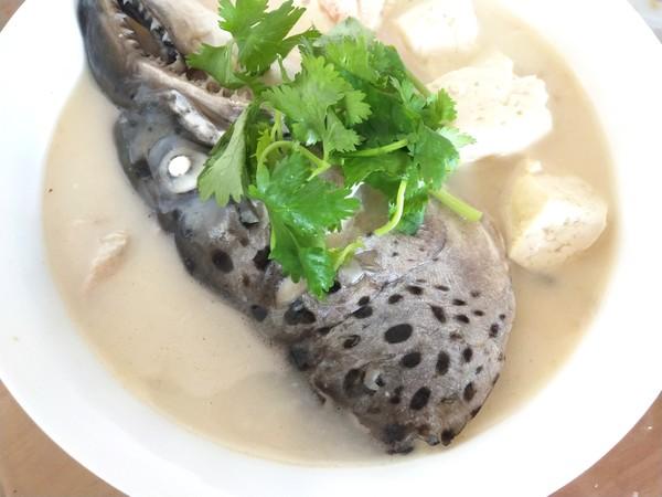 三文鱼头炖豆腐怎么炒