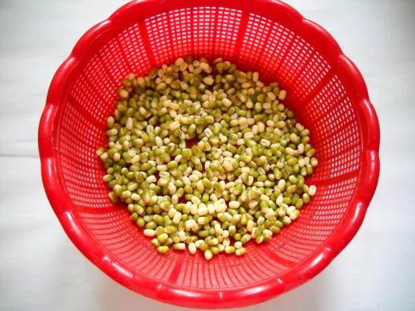 自发绿豆芽的步骤