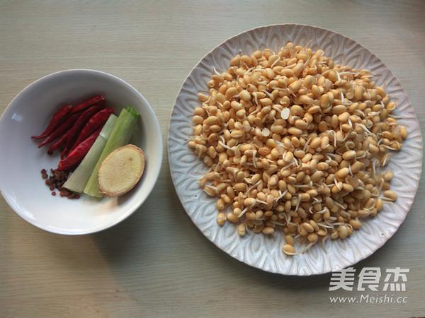 干煸黄豆芽的做法大全