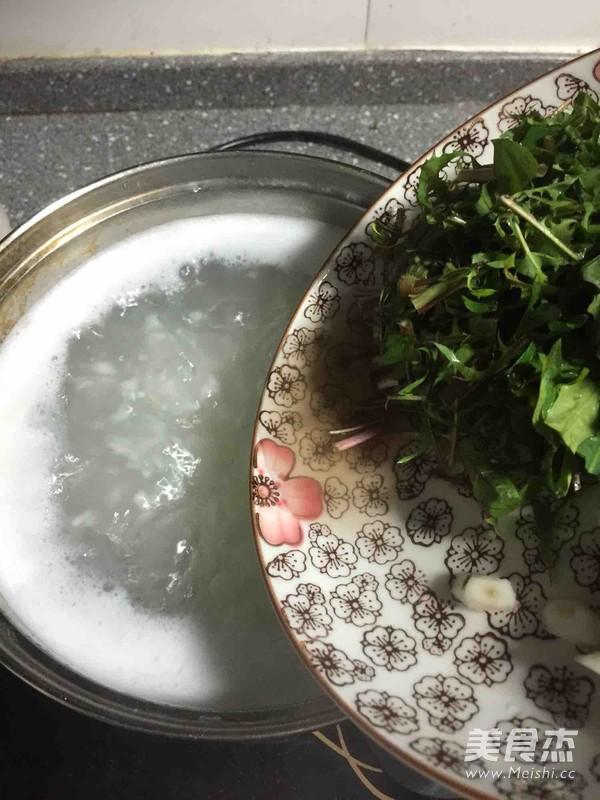 蒲公英煲粥的家常做法