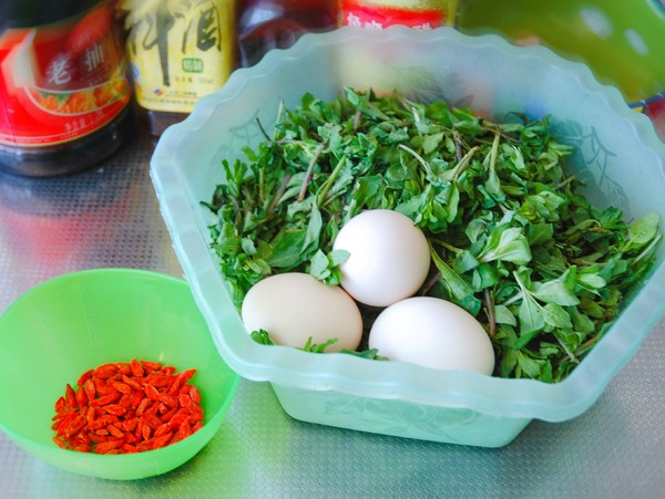 枸杞芽炒鸡蛋的做法大全