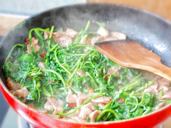枸杞芽炒肉的简单做法