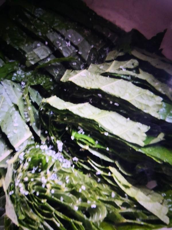 韩式苏子叶的做法图解