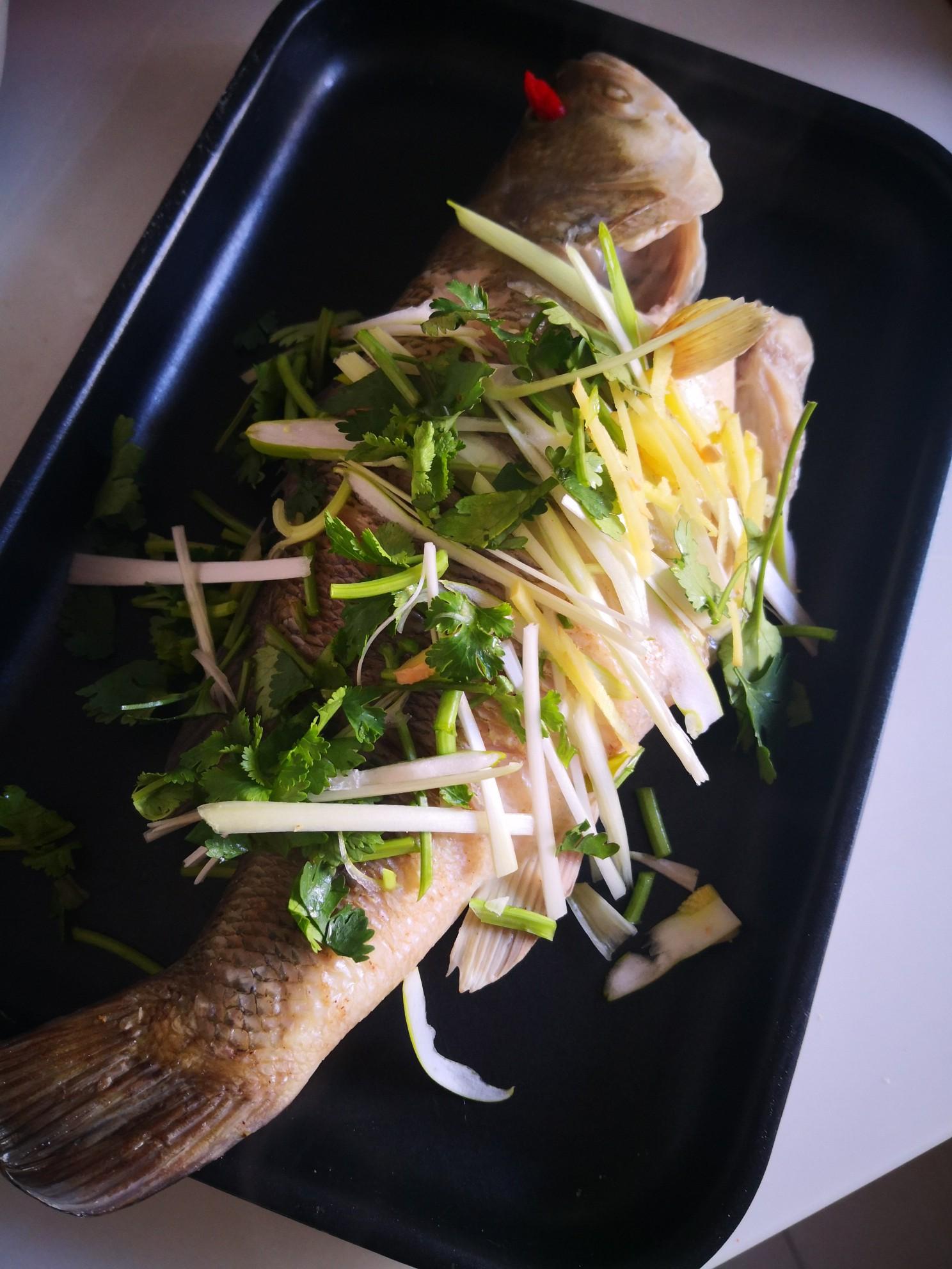 清蒸桂鱼怎么炖