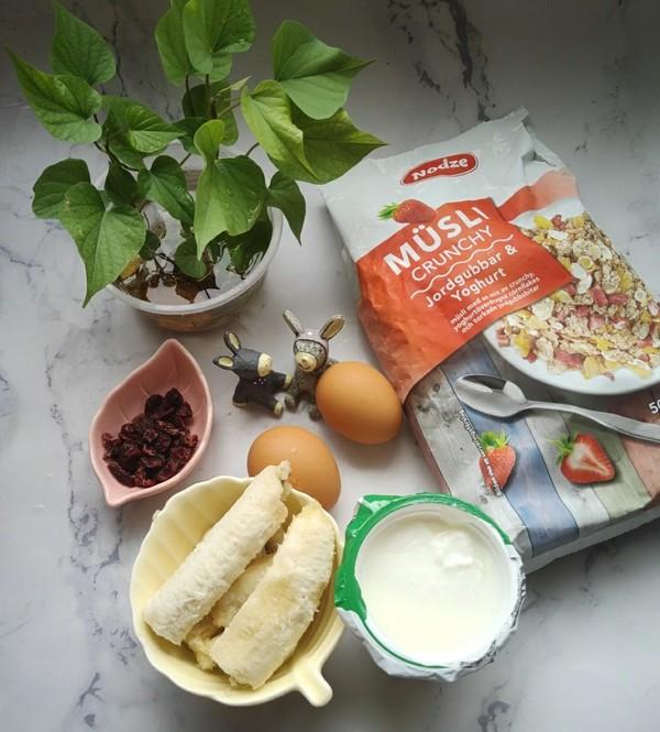 快手酸奶烤麦片的做法图解