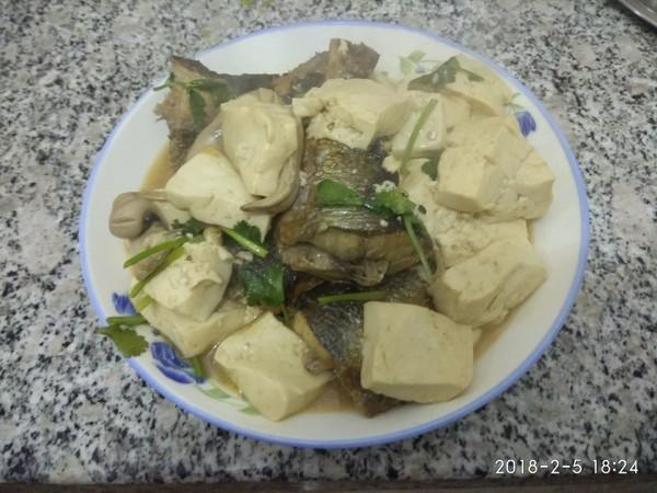 青鱼炖豆腐怎样做