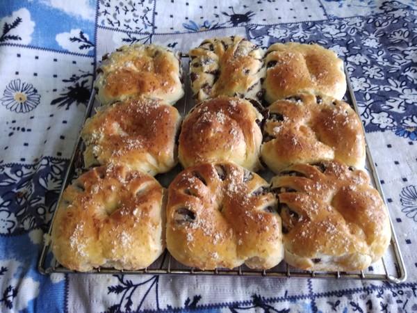 椰蓉豆沙面包怎样做