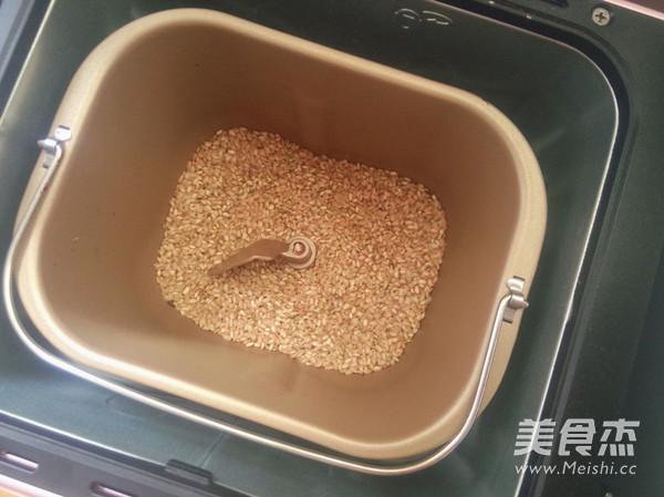 茉莉玄米茶的家常做法