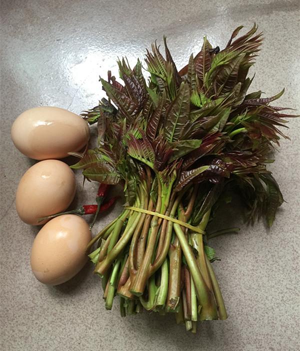 香椿炒鸡蛋的做法大全
