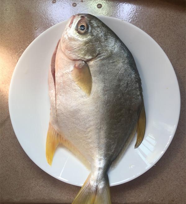 黄豆酱烧鲳鱼的做法大全