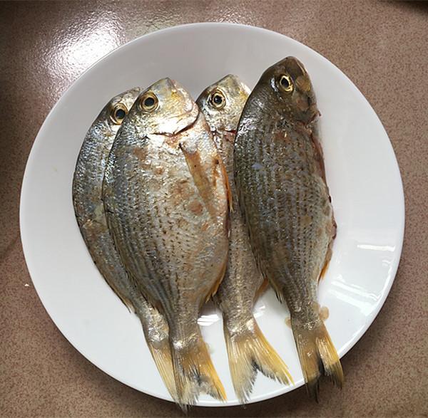 酱烧海立鱼的做法大全