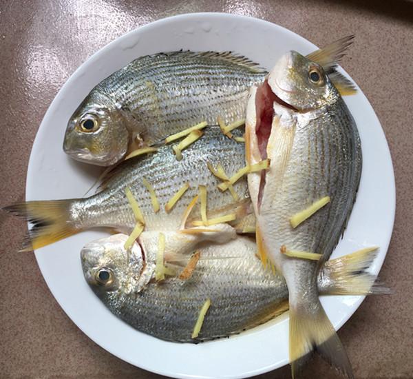 酱烧海立鱼的家常做法
