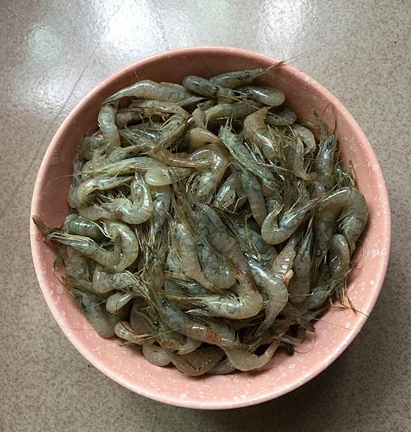韭菜小河虾的做法大全