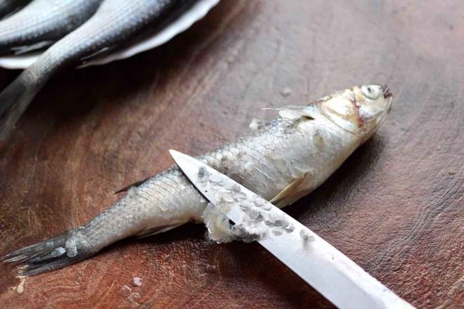 家常酱焖梭鱼的做法图解