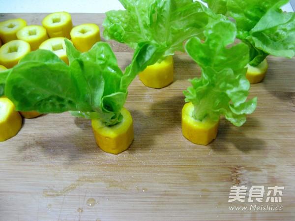 香蕉西葫芦小盆栽怎么吃