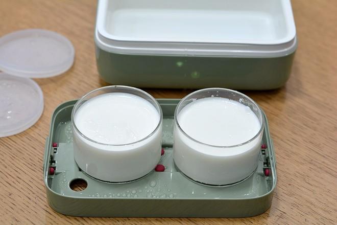 电饭盒自制原味酸奶怎么炖
