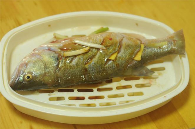 葱香鲈鱼怎么炒