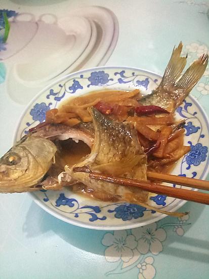 酸萝卜烧鲫鱼成品图