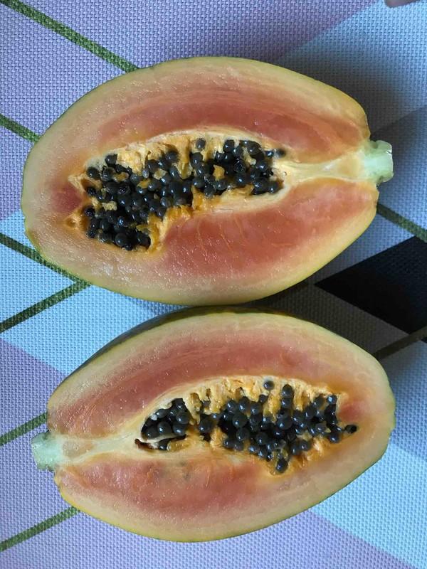 木瓜炖雪蛤的简单做法