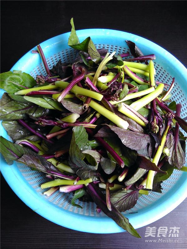 清炒红油菜的做法图解