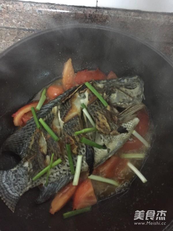 蕃茄焖罗非鱼怎么煸