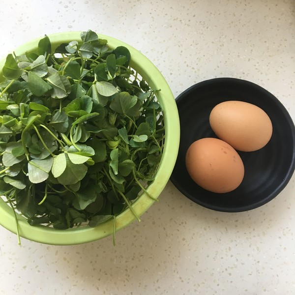 金花菜炒鸡蛋的步骤