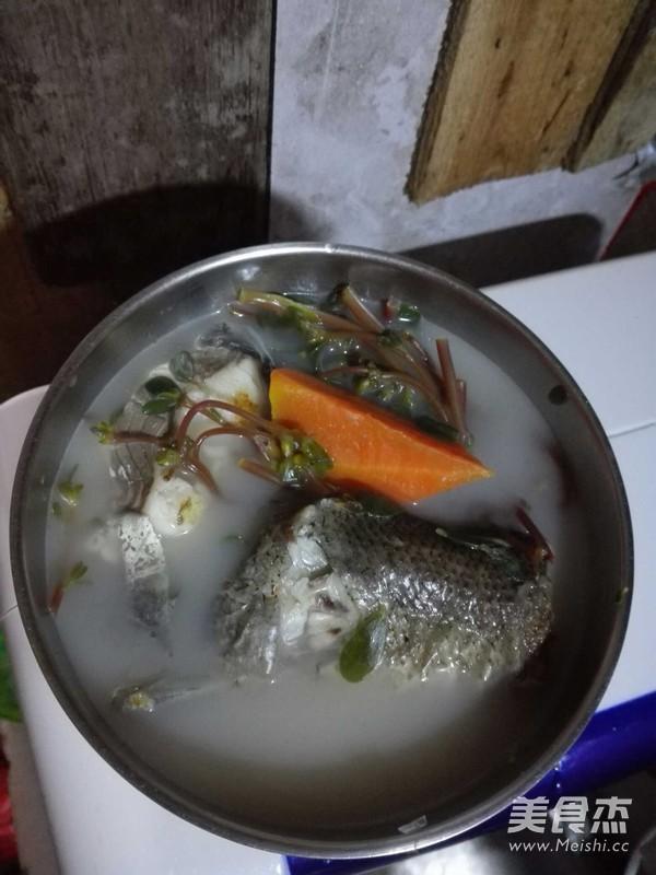 马齿苋煲鱼尾的简单做法
