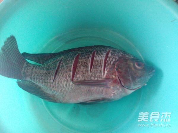 红萝卜烧罗非鱼的做法大全
