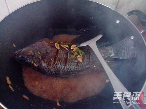 红萝卜烧罗非鱼怎么吃