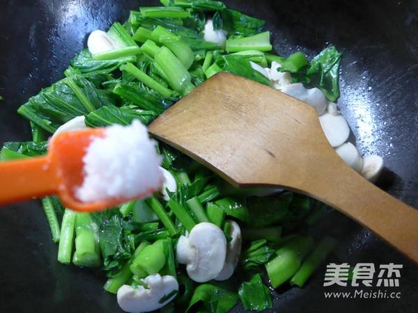 蘑菇炒油菜苔怎么炒