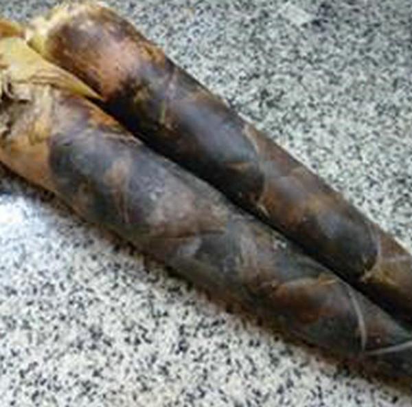酸菜雷笋排骨的做法图解