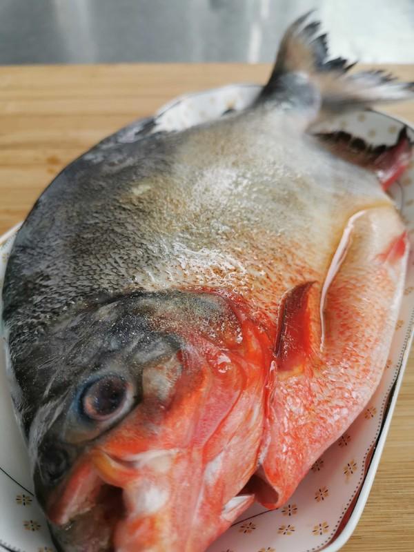 清蒸红石斑鱼的做法图解