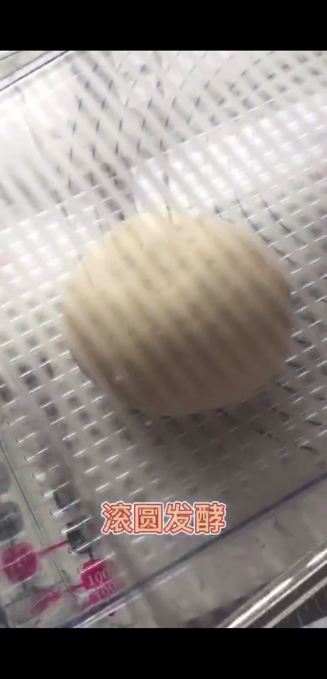 粗粮细作!麦麸黑麦奶酪包的做法图解