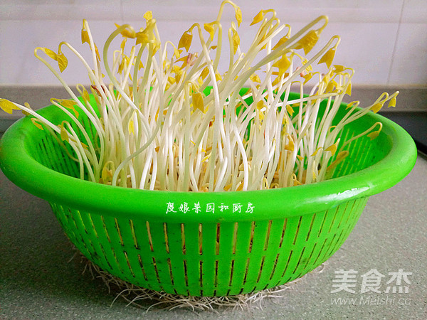 自发绿豆芽成品图