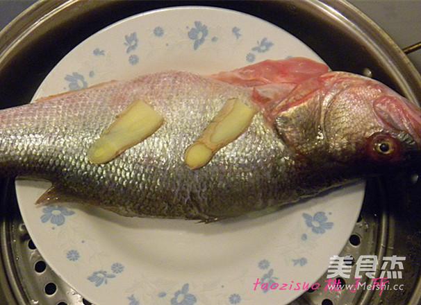 豉油蒸鲈鱼的家常做法