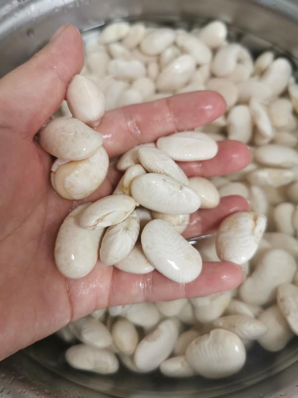白芸豆沙的做法大全