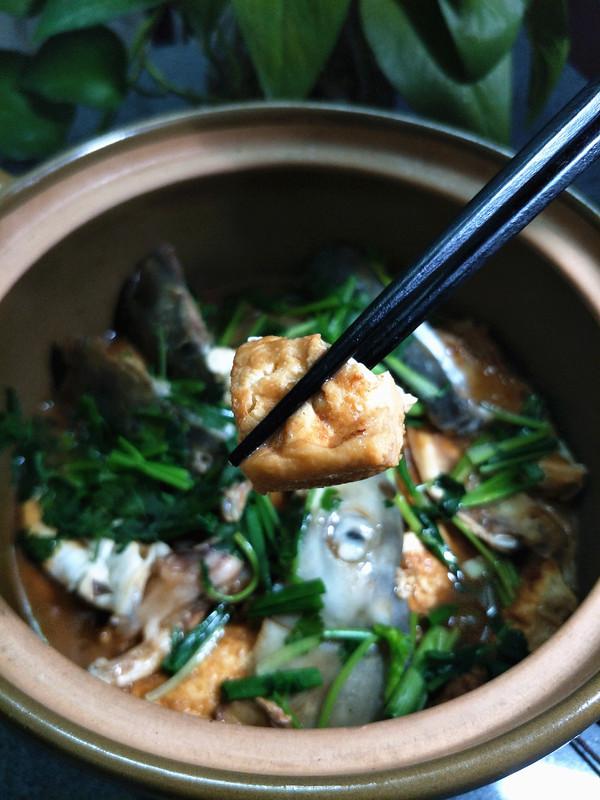 豆腐焖鱼头成品图