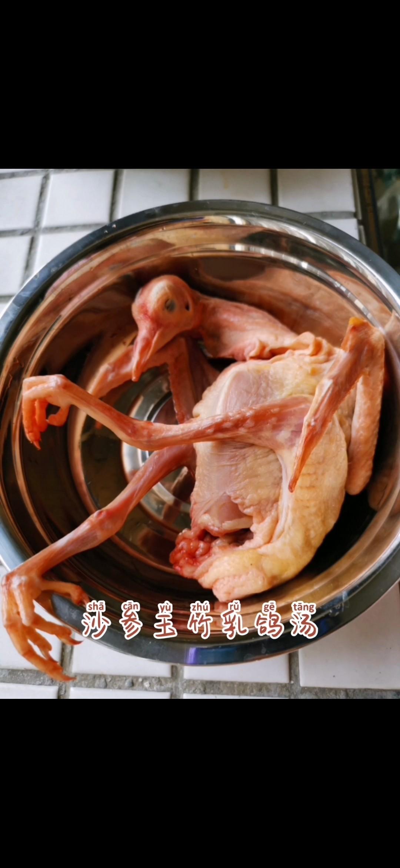 沙参玉竹乳鸽汤的做法大全