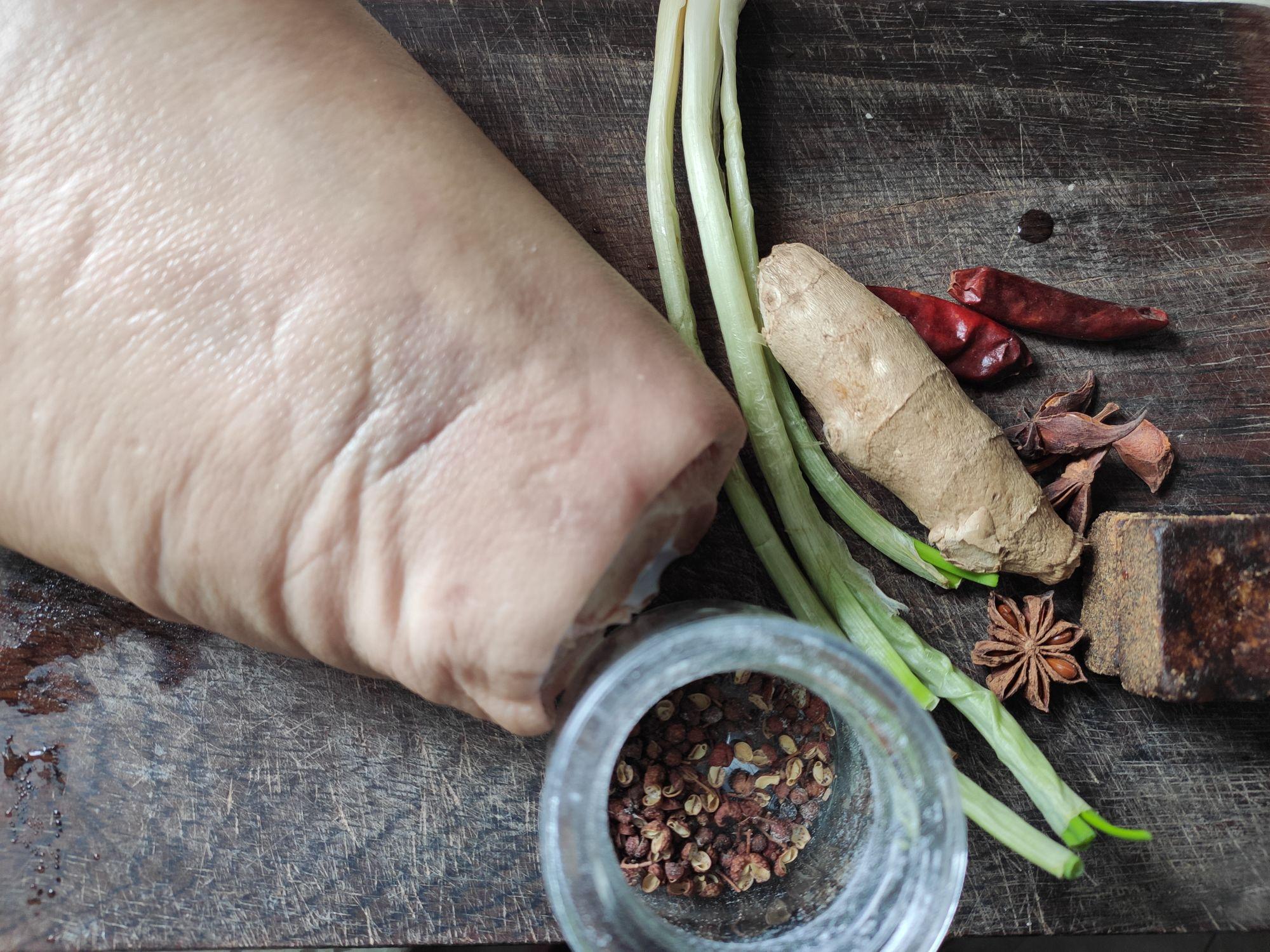 砂锅炖东坡肘子的做法大全