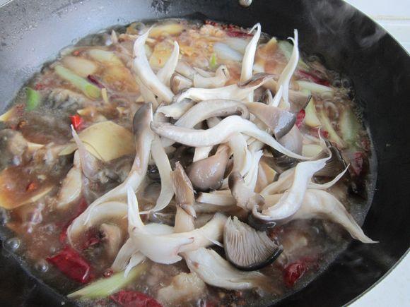 蘑菇炖鲤鱼怎样做