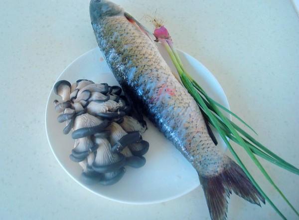 平菇焖鱼的做法大全