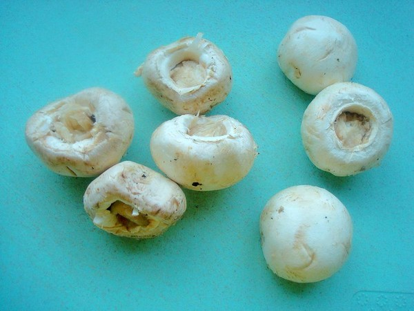 孜然口菇的做法图解
