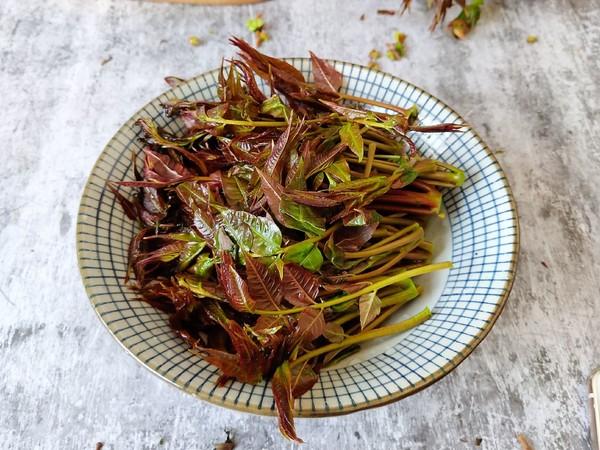 嫩香椿炒豆干的做法图解