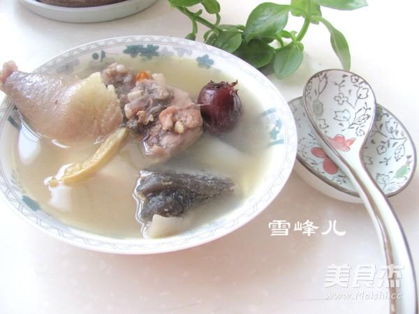 甲鱼母鸡汤怎么煮