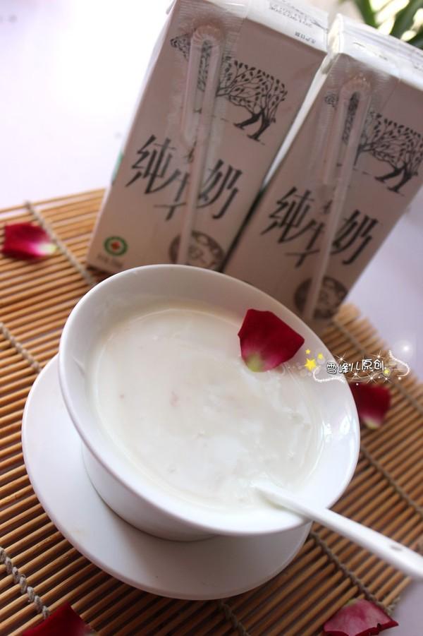 自制玫瑰酸奶成品图