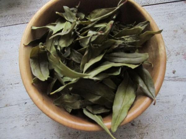 石榴叶茶饮的家常做法