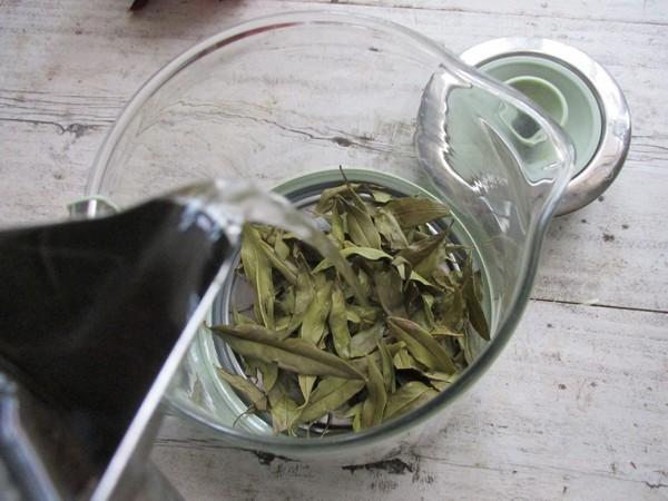 石榴叶茶饮的简单做法