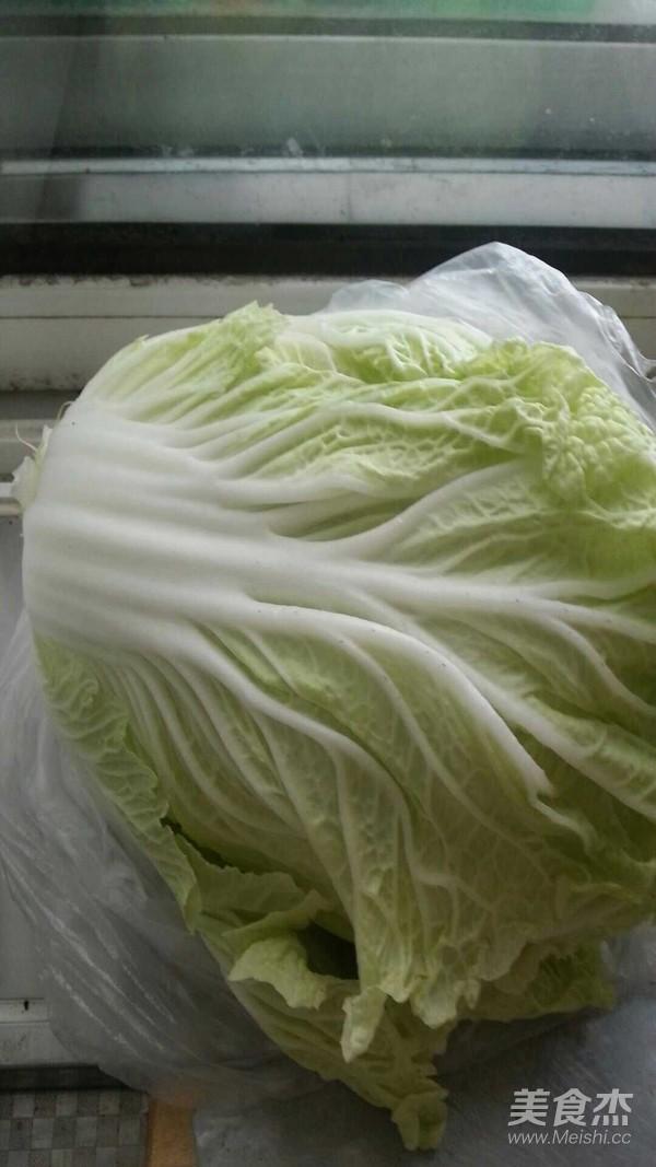 猪肉白菜包子的做法大全